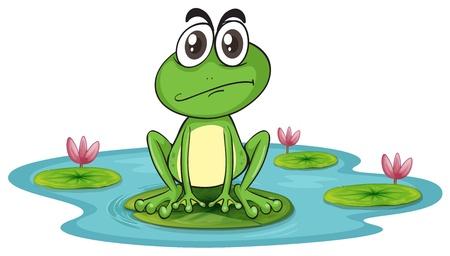 ilustration di rana triste e verde acqua con loto