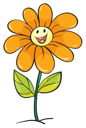 flower: detailed illustration of a yellow flower on a white background Illustration