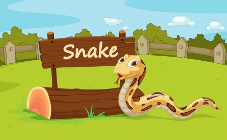constrictor: Illustration of animal enclosure at the zoo
