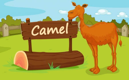 camel post: Illustration of animal enclosure at the zoo