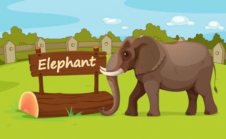 captive: Illustration of animal enclosure at the zoo