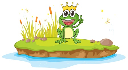 illustration of a frog and a water on a white background Stock Vector - 16105275