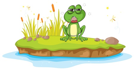 illustration of a frog and a water on a white background Stock Vector - 16105273