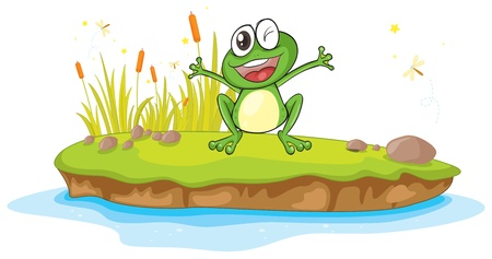 funny frog: illustration of a frog and a water on a white background