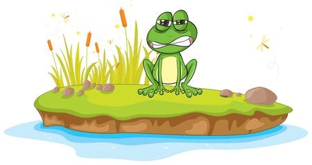canne: illustrazione di una rana e un acqua su uno sfondo bianco
