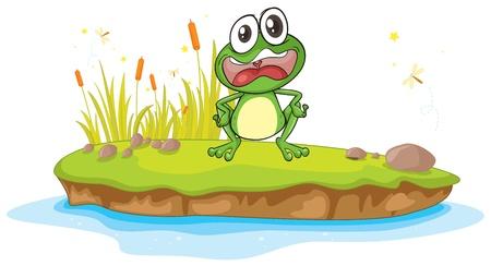 ojos llorando: Ilustraci�n de una rana y un agua en un fondo blanco