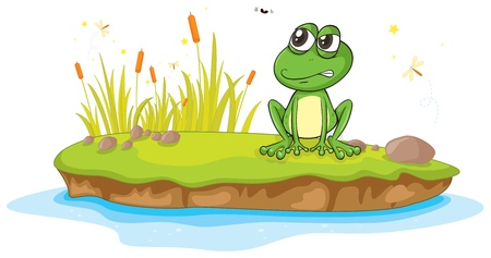 reeds: illustration of a frog and a water on a white background