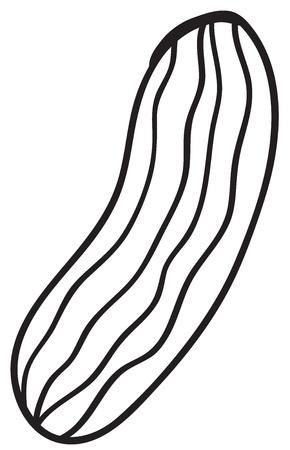 illustraiton: Illustraiton of a simple vegetable illustration on white