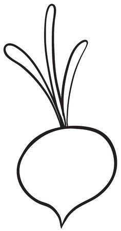 radish: Illustraiton of a simple vegetable illustration on white
