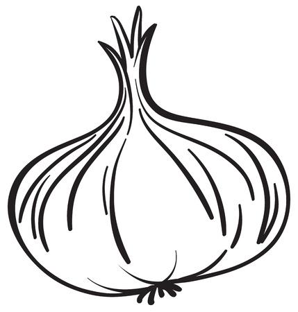 cartoon onion: Illustraiton of a simple vegetable illustration on white