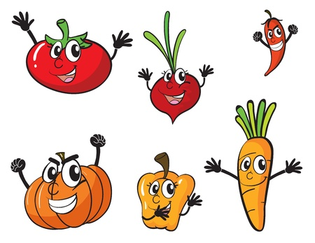 food stuff: illustration of various vegetables on a white background