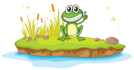 flora fauna: illustration of a frog and water on a white background