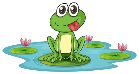 illustration of a frog and water on a white background Vector