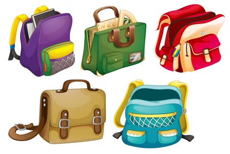 purse: illustration of school bags on a white background Illustration