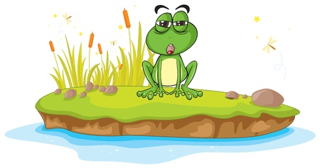 illustration of a frog and water on a white background Stock Vector - 16188228