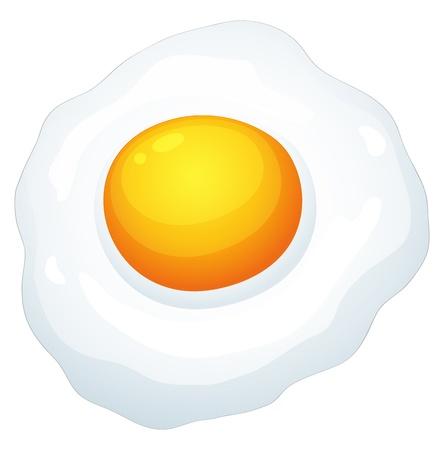 illustration of an egg omlet on a white background Vector