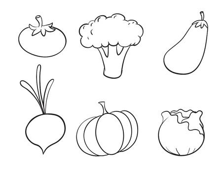 баклажан: Иллюстрация различных овощей на белом фоне