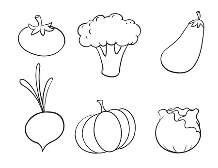 pumpkin tomato: illustration of various vegetables on a white background