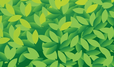 illustration of green and natural leaves  Vector