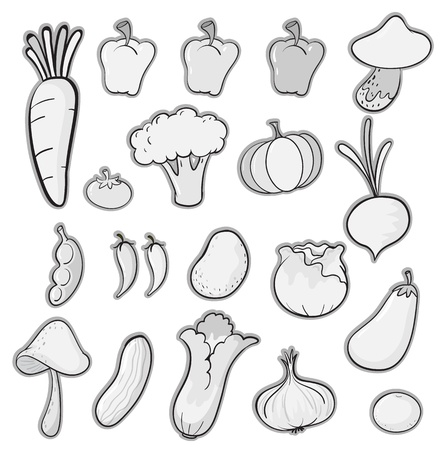 illustration of various vegetables on a white background Vector