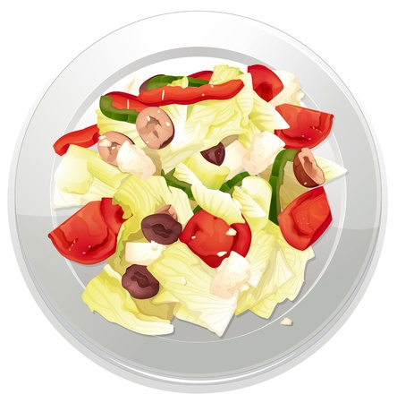 garnishing: illustration of a Salad on a white background