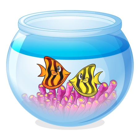 illustration of a water bowl and a fish on a white background Stock Vector - 16319937