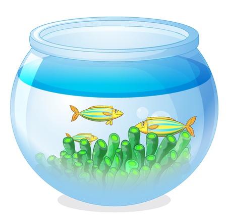 illustration d'un bol d'eau et un poisson sur un fond blanc