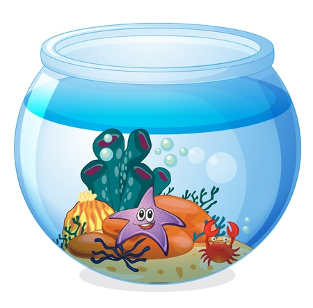 illustration of a water bowl and a fish on a white background Stock Vector - 16451044