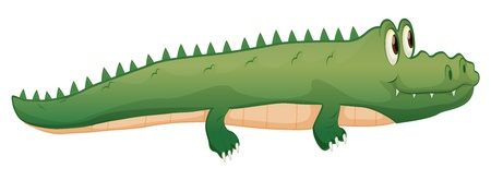 illustration of a crocodile on a white background Stock Vector - 16450954