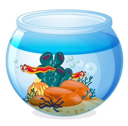 gold fish bowl: illustration of a water bowl and animals on a white background