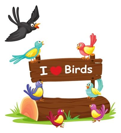 aves caricatura: ilustración de los pájaros y un tablón de anuncios en un fondo blanco Vectores