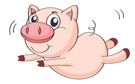 pig cartoon: illustration of a pig on a white background
