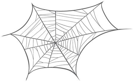spider net: illustration of a spider net on a white background