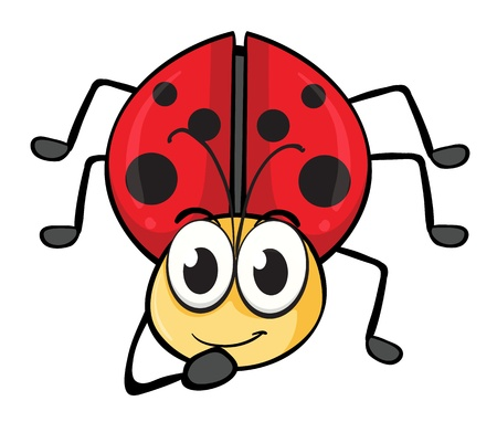 illustration of a ladybug on a white background Stock Vector - 16590511