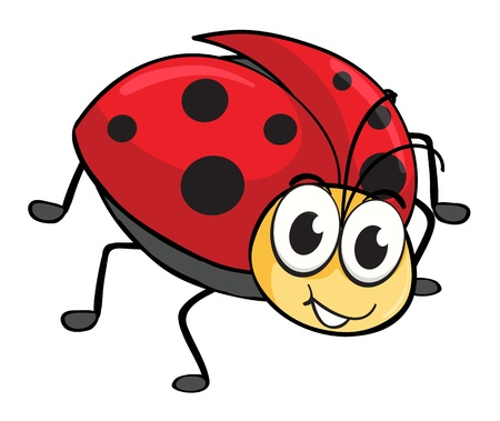 illustration of a ladybug on a white background Vector