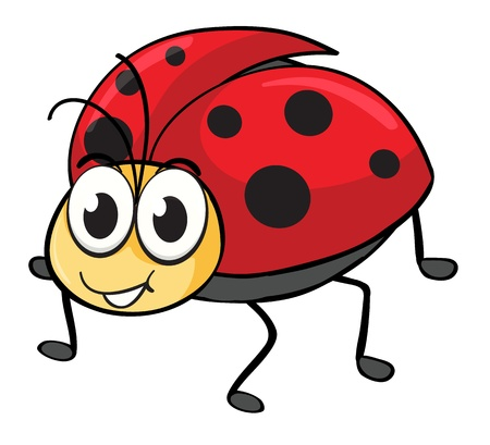 cartoon ladybug: illustration of a ladybug on a white background Illustration