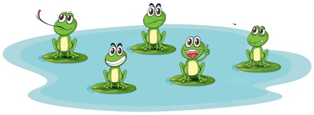 illustration of a frog and water on a white background Stock Vector - 16633927
