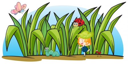 hormiga hoja: ilustración de diversos insectos y una chica sobre un fondo blanco Vectores