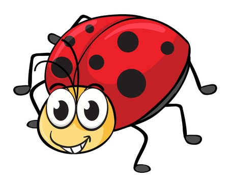 illustration of a ladybug on a white background Stock Vector - 16667320