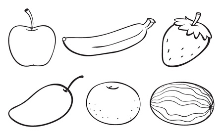 illustration of a sketch of various fruits on a white background Stock Vector - 16667380