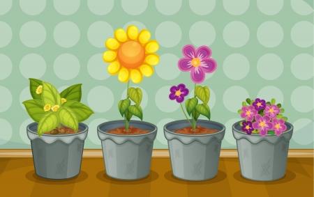 flowerpots: Illustration of various potted plants on a wooden floor Illustration
