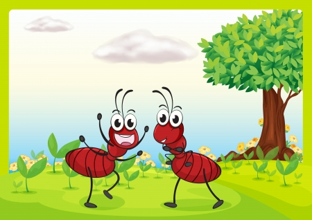 red ant: Illustration of ants in a beautiful nature