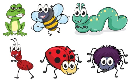 Illustration of various insects and animals on a white background Stock Vector - 16930275