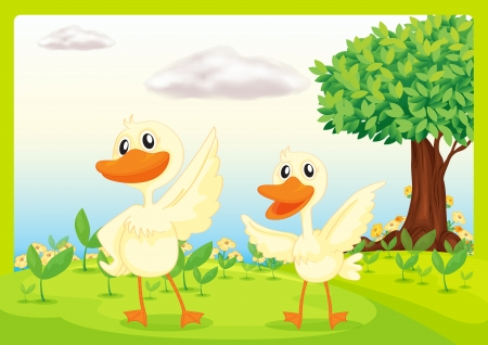 Illustration of ducks in a beautiful nature Stock Vector - 16969804