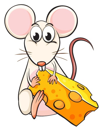 Illustration of a mouse and cheese on a white background