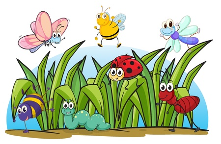 Illustration of various insects and grass on a white background