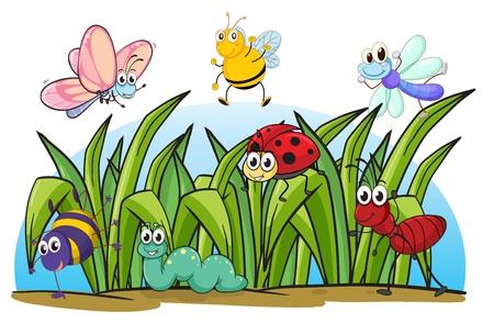 hormiga hoja: Ilustración de varios insectos y hierba sobre un fondo blanco Vectores