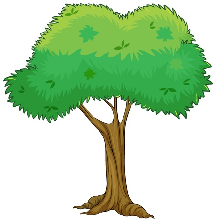 Illustration of a tree on a white background Vector