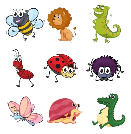cartoon forest: Illustration of various animals and insects on a white background