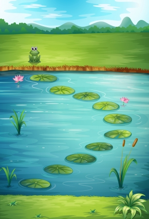 pond water: Illustration of a frog and a lake in a beautiful nature